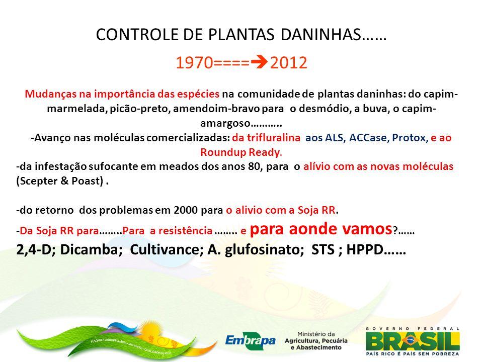 CONTROLE DE PLANTAS DANINHAS……