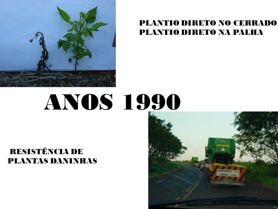 ANOS 1990 PLANTIO DIRETO NO CERRADO PLANTIO DIRETO NA PALHA
