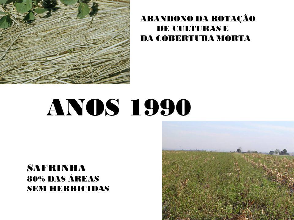 ANOS 1990 SAFRINHA ABANDONO DA ROTAÇÃO DE CULTURAS E