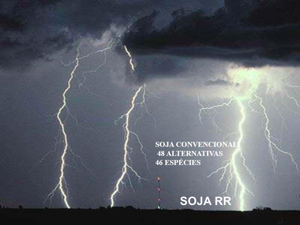 SOJA CONVENCIONAL: 48 ALTERNATIVAS 46 ESPÉCIES SOJA RR