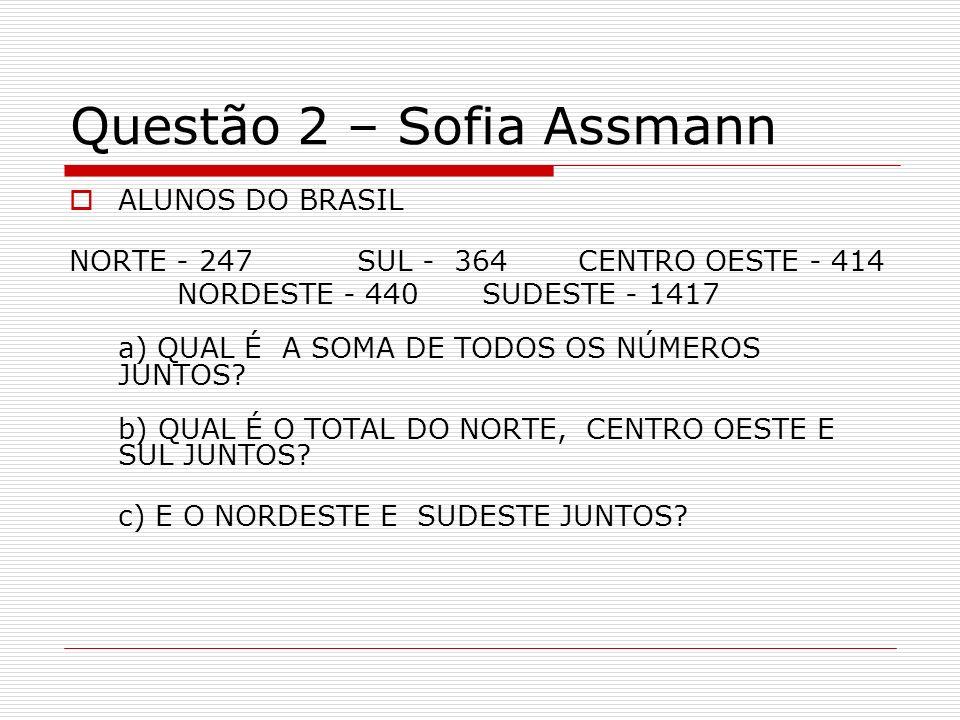Questão 2 – Sofia Assmann