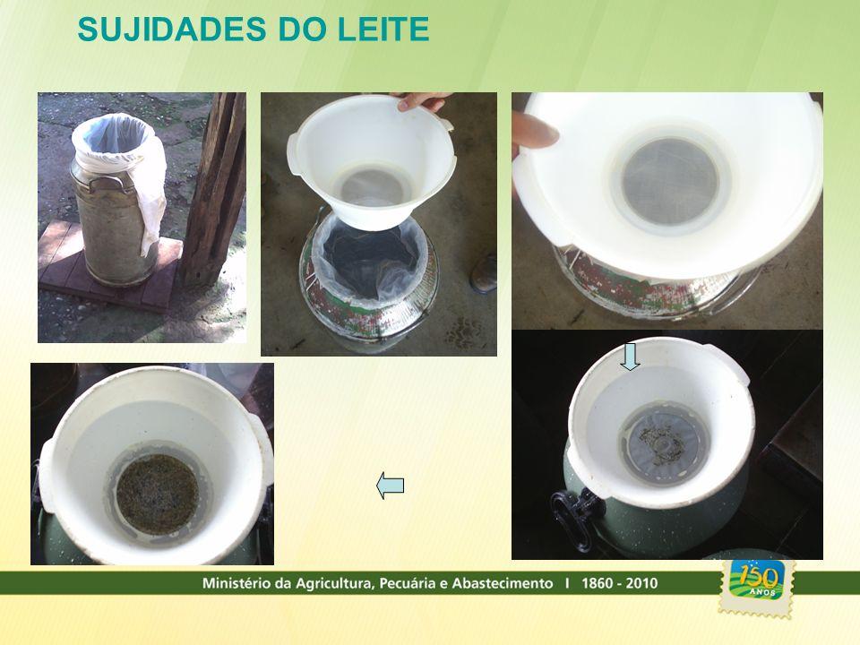 SUJIDADES DO LEITE