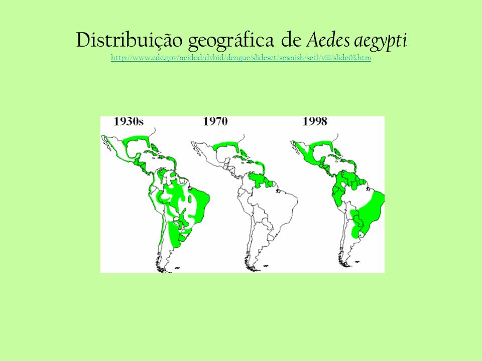 Distribuição geográfica de Aedes aegypti http://www. cdc