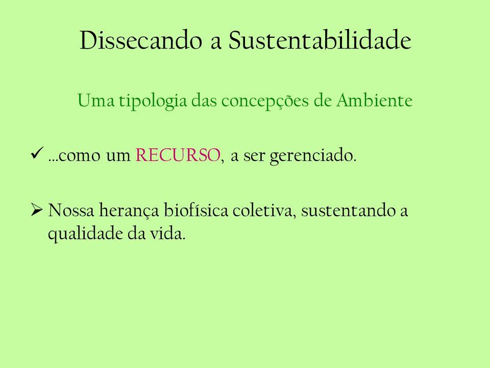 Dissecando a Sustentabilidade