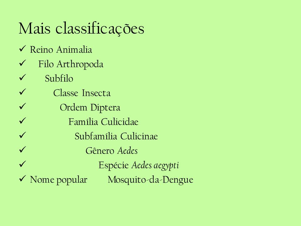 Mais classificações Reino Animalia Filo Arthropoda Subfilo