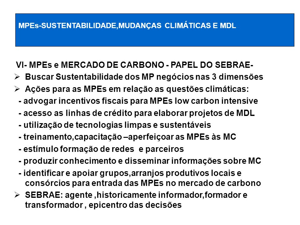 VI- MPEs e MERCADO DE CARBONO - PAPEL DO SEBRAE-