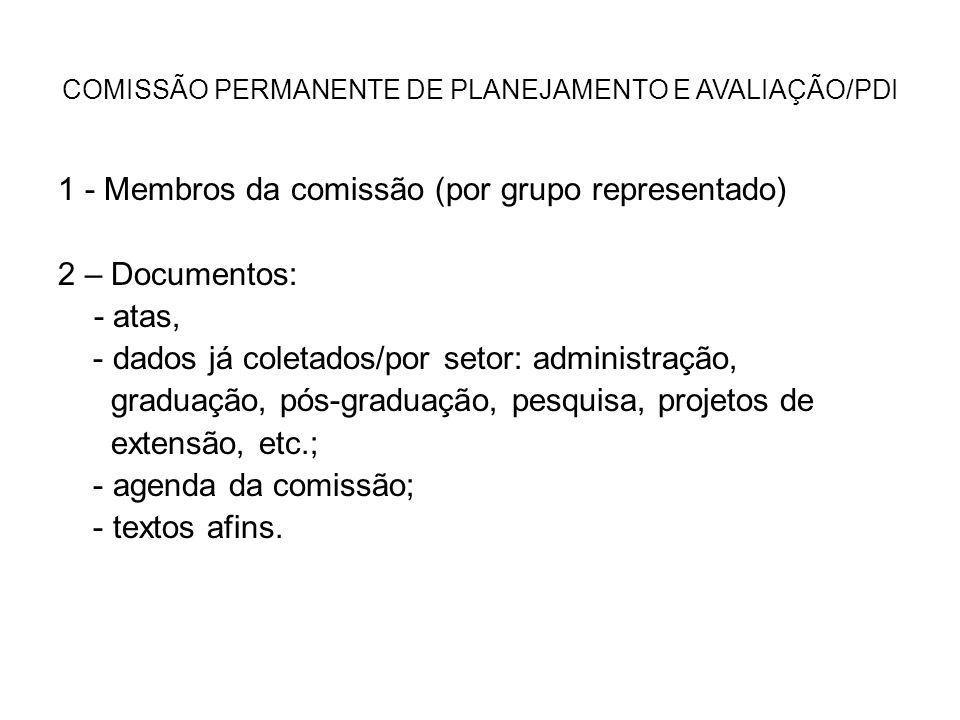 COMISSÃO PERMANENTE DE PLANEJAMENTO E AVALIAÇÃO/PDI