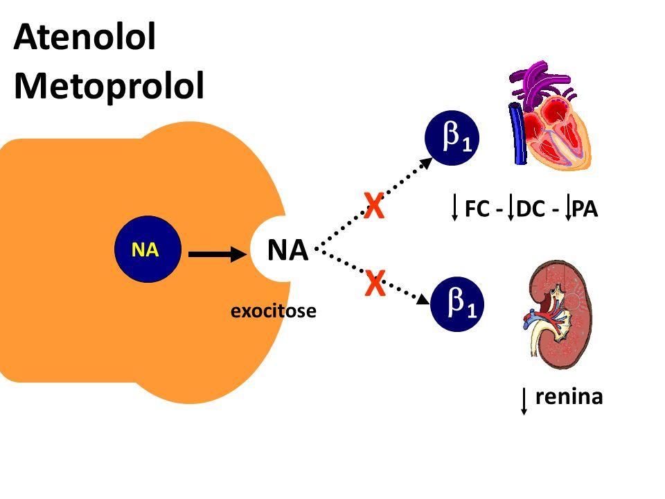 exocitose NA 1 Atenolol Metoprolol FC - DC - PA renina X