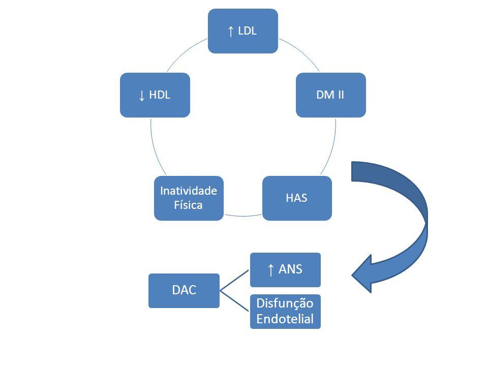 ↑ LDL DM II HAS Inatividade Física ↓ HDL DAC ↑ ANS Disfunção Endotelial