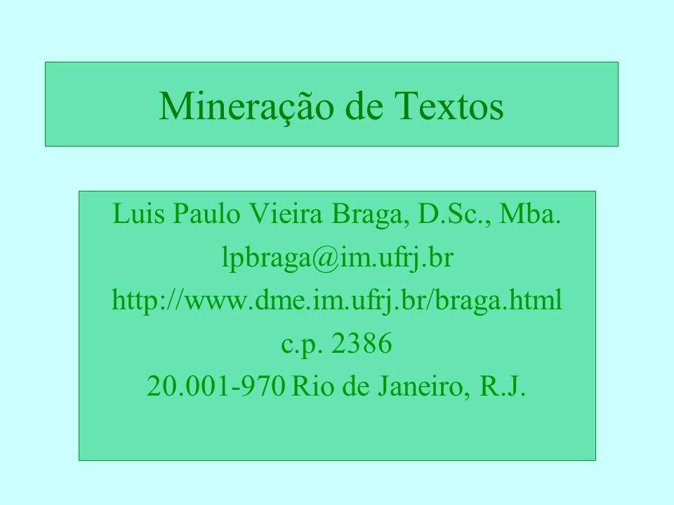 Luis Paulo Vieira Braga, D.Sc., Mba.