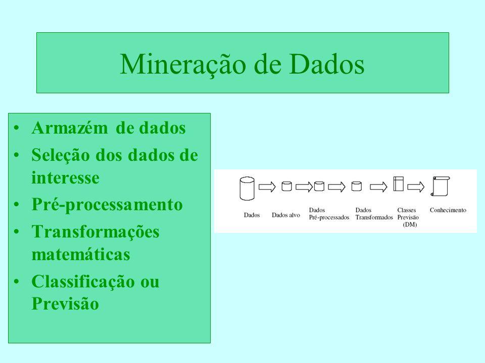 Mineração de Dados Armazém de dados Seleção dos dados de interesse