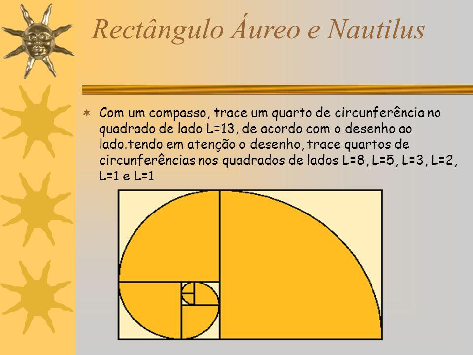 Rectângulo Áureo e Nautilus