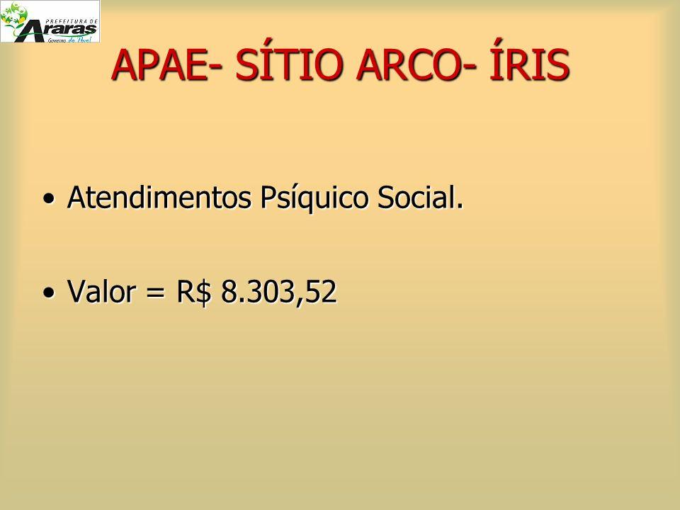 APAE- SÍTIO ARCO- ÍRIS Atendimentos Psíquico Social.