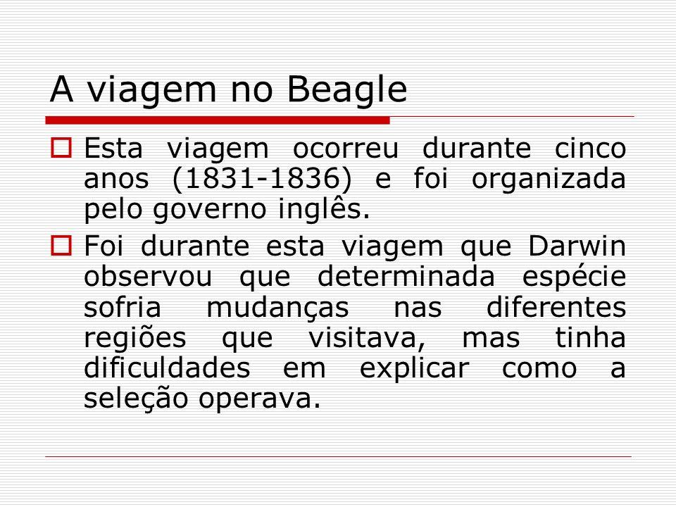 A viagem no Beagle Esta viagem ocorreu durante cinco anos (1831-1836) e foi organizada pelo governo inglês.