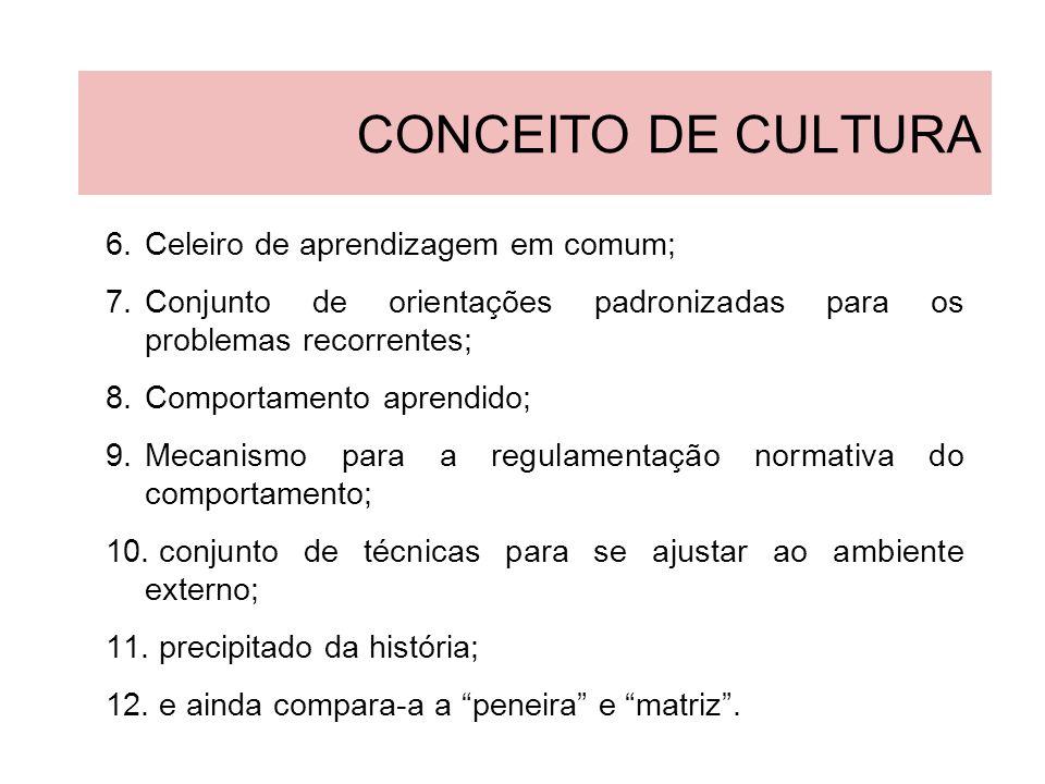 CONCEITO DE CULTURA Celeiro de aprendizagem em comum;
