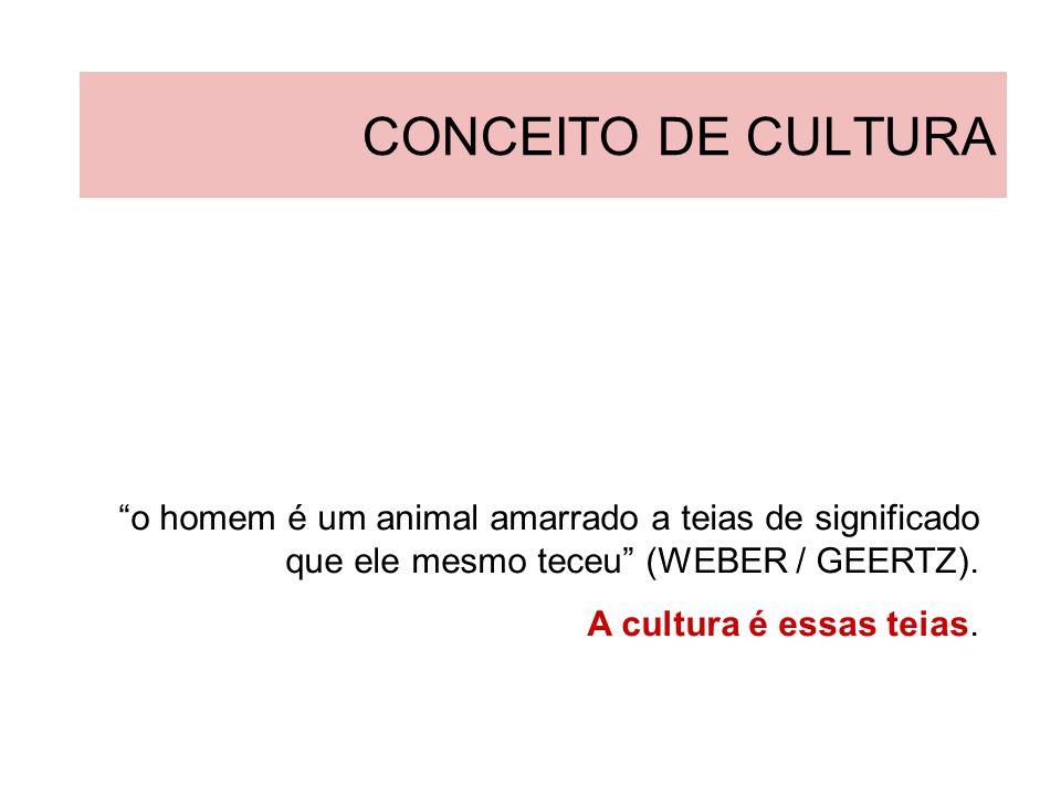 CONCEITO DE CULTURA o homem é um animal amarrado a teias de significado que ele mesmo teceu (WEBER / GEERTZ).