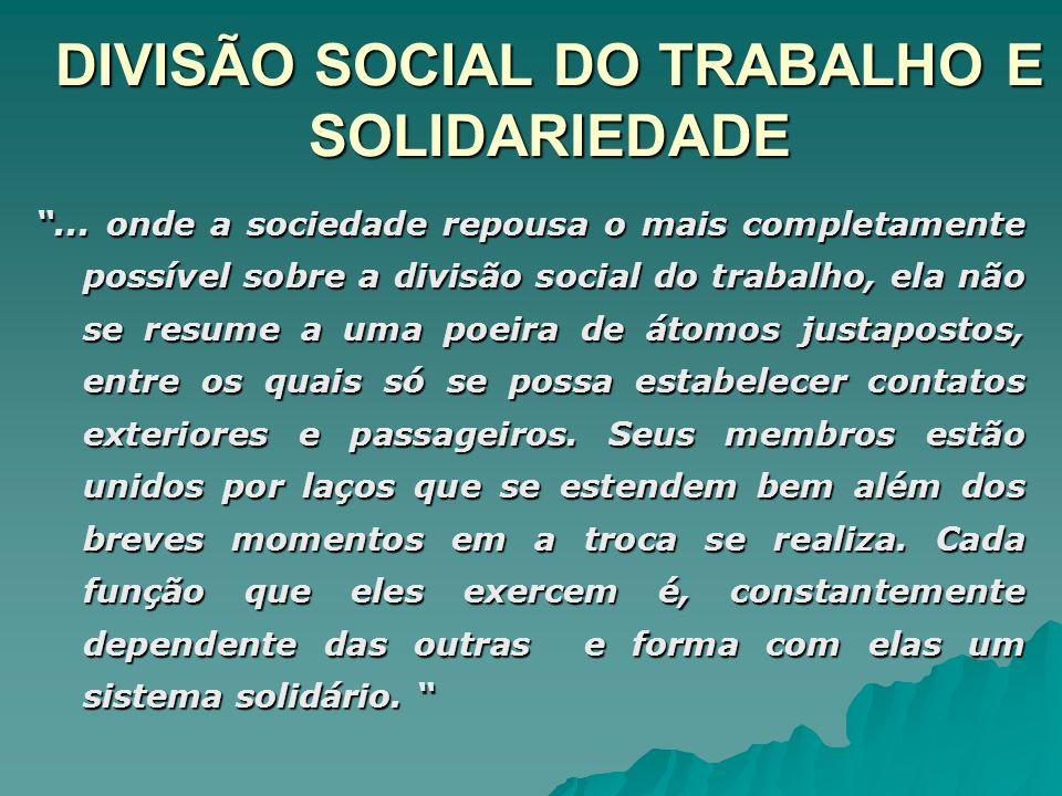 DIVISÃO SOCIAL DO TRABALHO E SOLIDARIEDADE