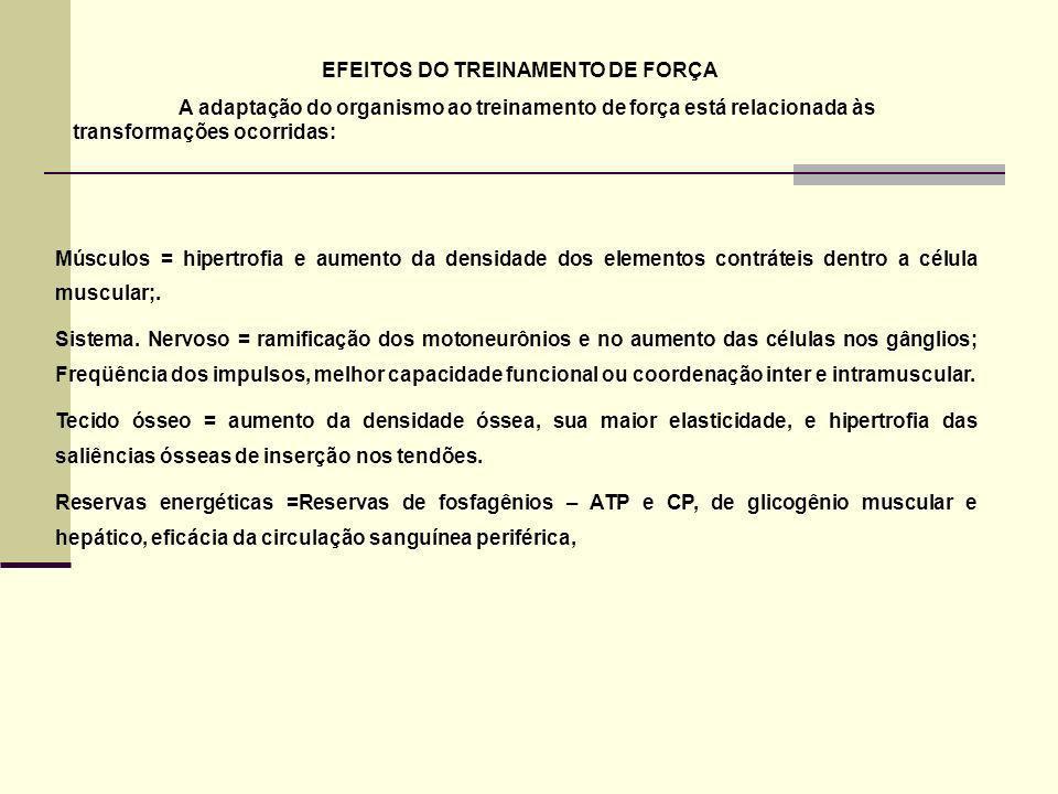 EFEITOS DO TREINAMENTO DE FORÇA