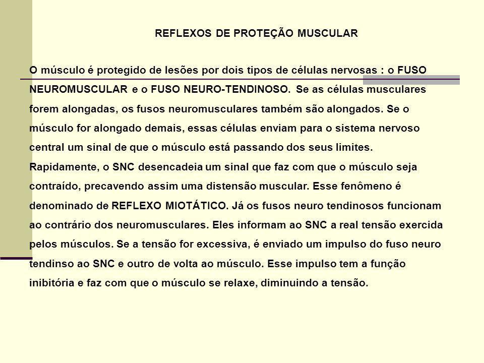 REFLEXOS DE PROTEÇÃO MUSCULAR