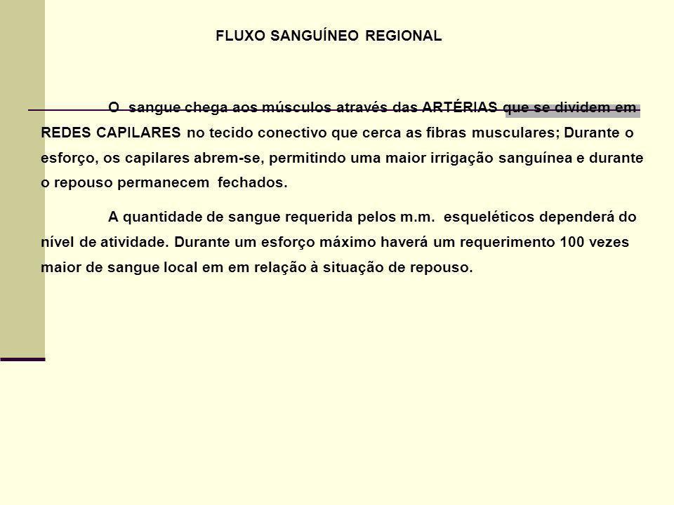 FLUXO SANGUÍNEO REGIONAL