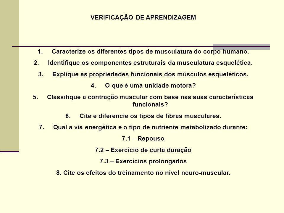 VERIFICAÇÃO DE APRENDIZAGEM