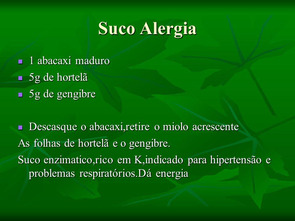Suco Alergia 1 abacaxi maduro 5g de hortelã 5g de gengibre