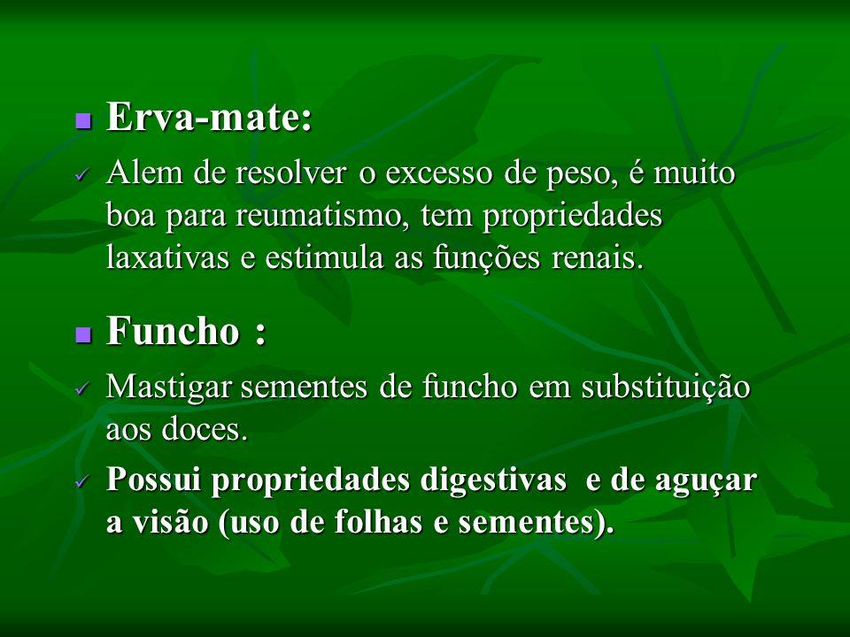 Erva-mate: Alem de resolver o excesso de peso, é muito boa para reumatismo, tem propriedades laxativas e estimula as funções renais.