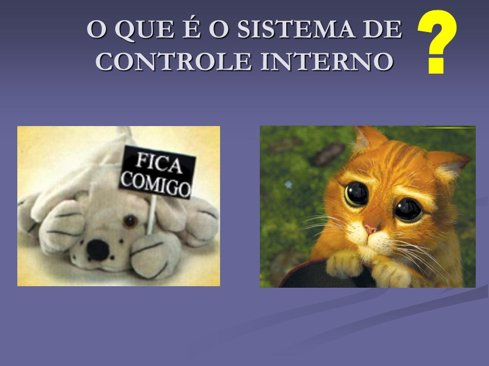 O QUE É O SISTEMA DE CONTROLE INTERNO