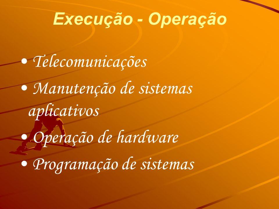 • Manutenção de sistemas aplicativos • Operação de hardware
