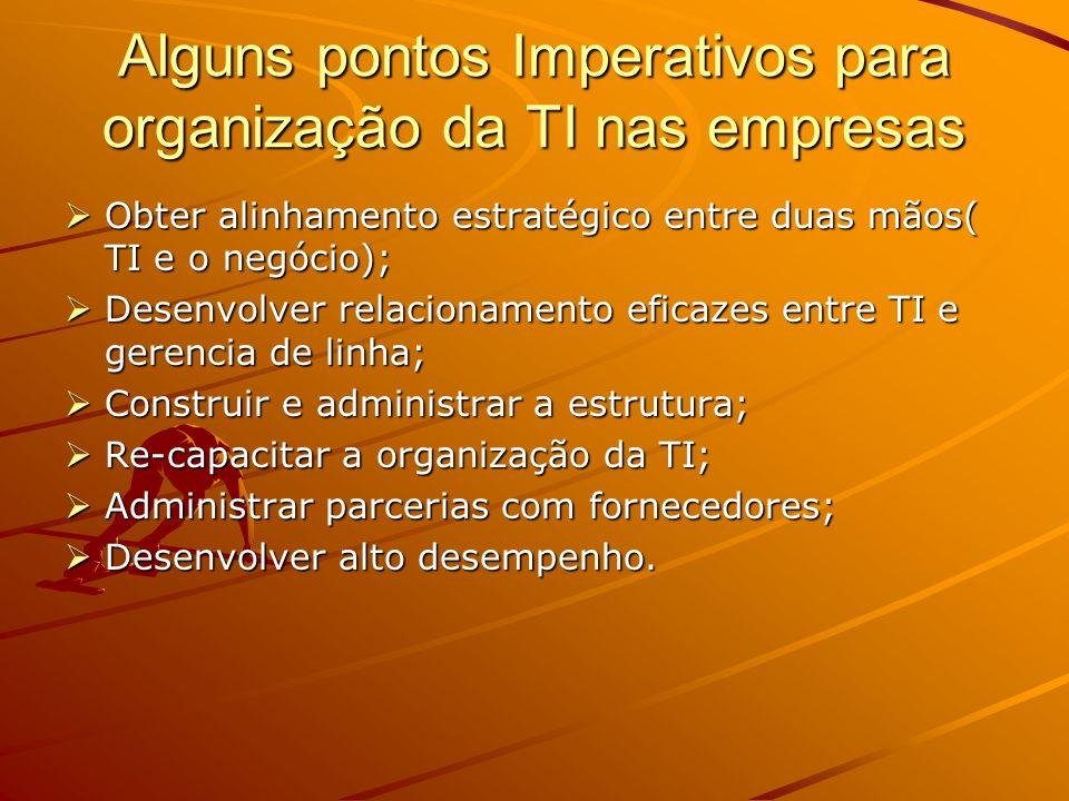 Alguns pontos Imperativos para organização da TI nas empresas