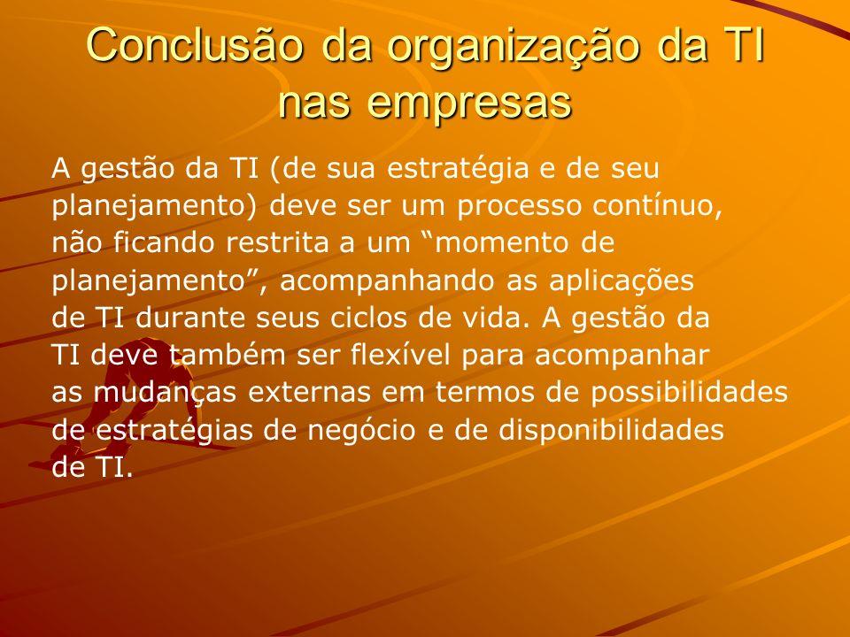 Conclusão da organização da TI nas empresas