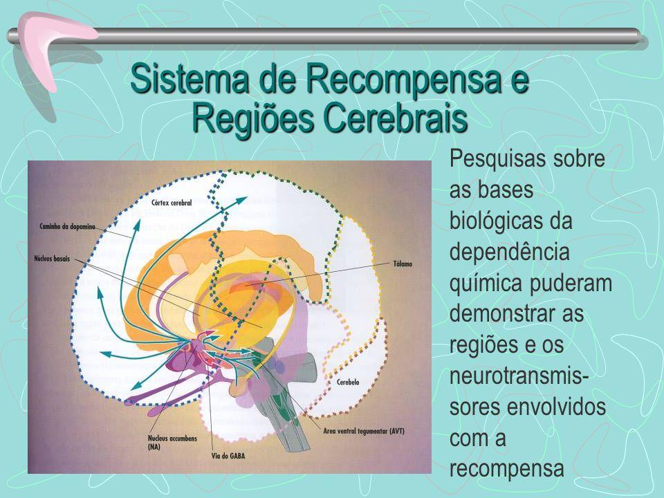 Sistema de Recompensa e Regiões Cerebrais