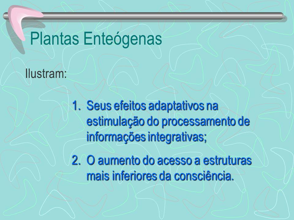 Plantas Enteógenas Ilustram: