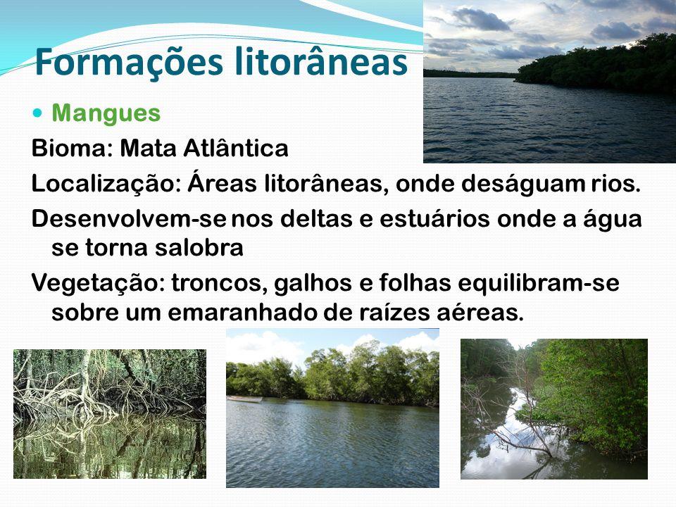 Formações litorâneas Mangues Bioma: Mata Atlântica