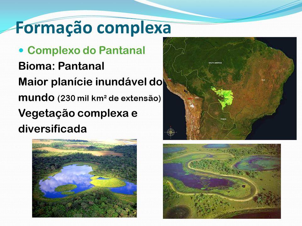 Formação complexa Complexo do Pantanal Bioma: Pantanal
