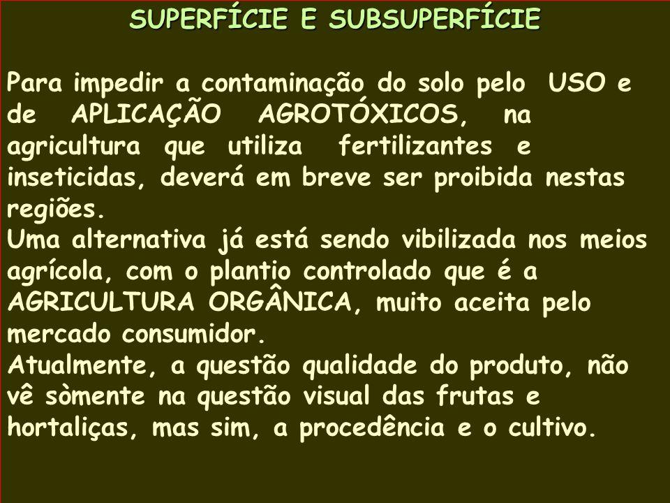 SUPERFÍCIE E SUBSUPERFÍCIE