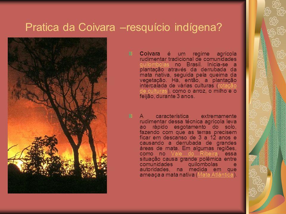 Pratica da Coivara –resquício indígena