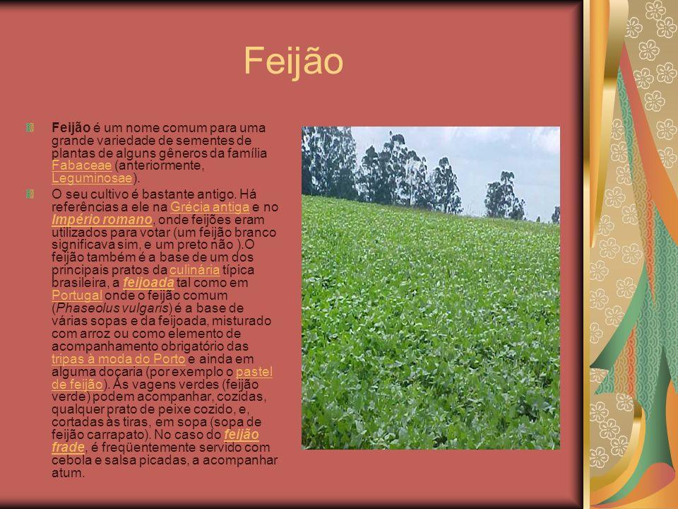 Feijão Feijão é um nome comum para uma grande variedade de sementes de plantas de alguns gêneros da família Fabaceae (anteriormente, Leguminosae).