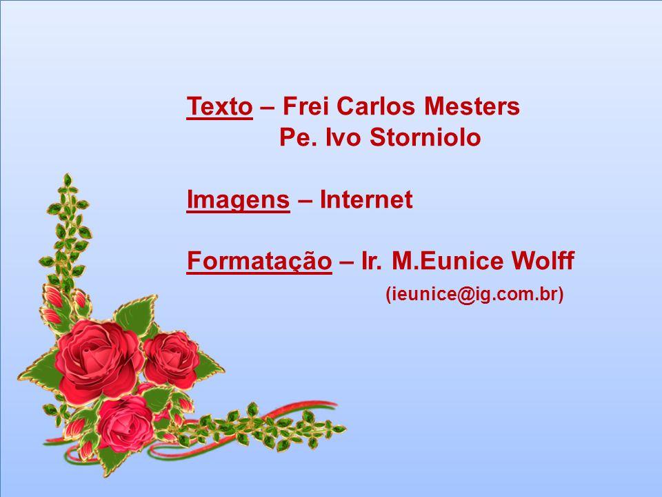Texto – Frei Carlos Mesters