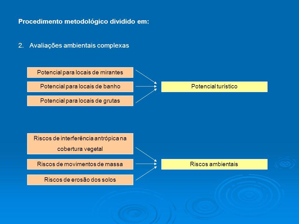 Procedimento metodológico dividido em: