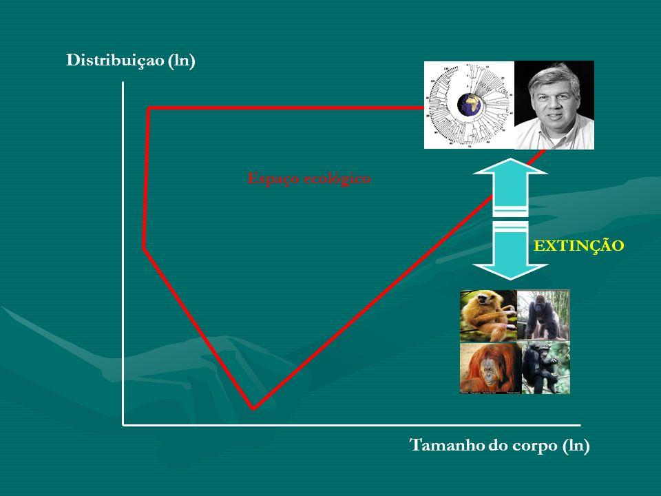 Distribuiçao (ln) Espaço ecológico EXTINÇÃO Tamanho do corpo (ln)