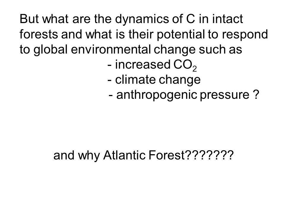 and why Atlantic Forest