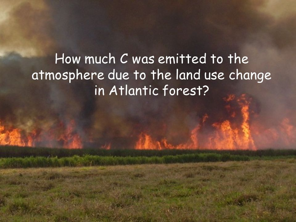 How much C was emitted to the atmosphere due to the land use change in Atlantic forest