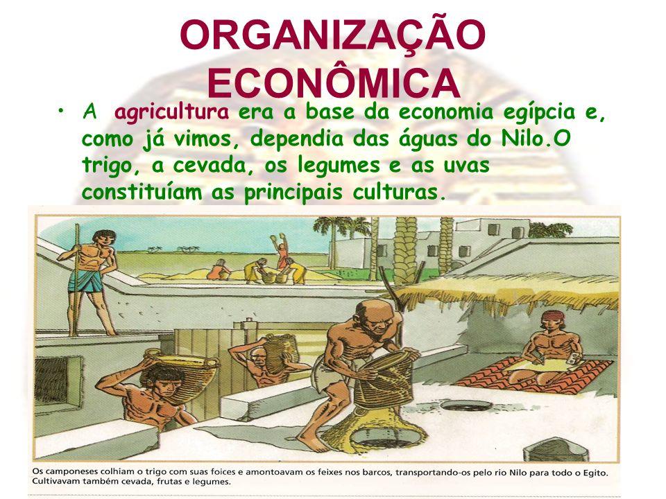 ORGANIZAÇÃO ECONÔMICA