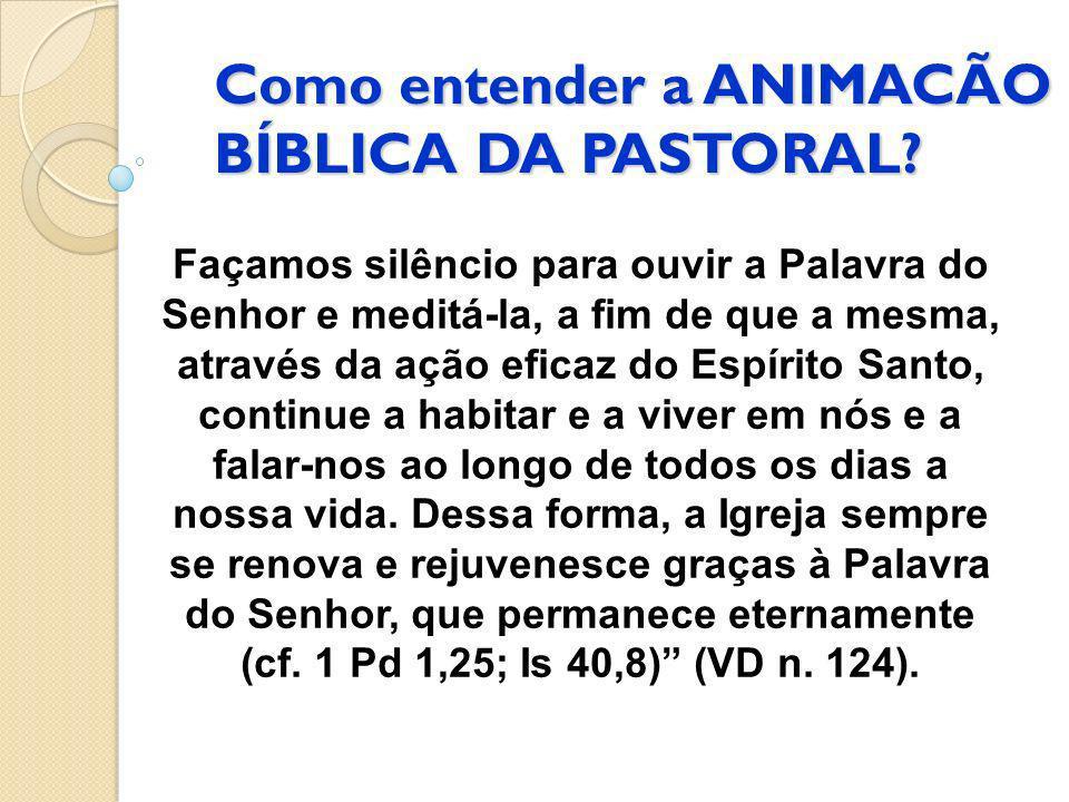 Como entender a ANIMACÃO BÍBLICA DA PASTORAL