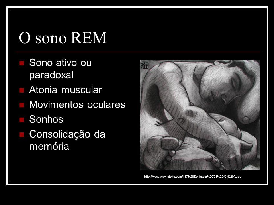 O sono REM Sono ativo ou paradoxal Atonia muscular Movimentos oculares