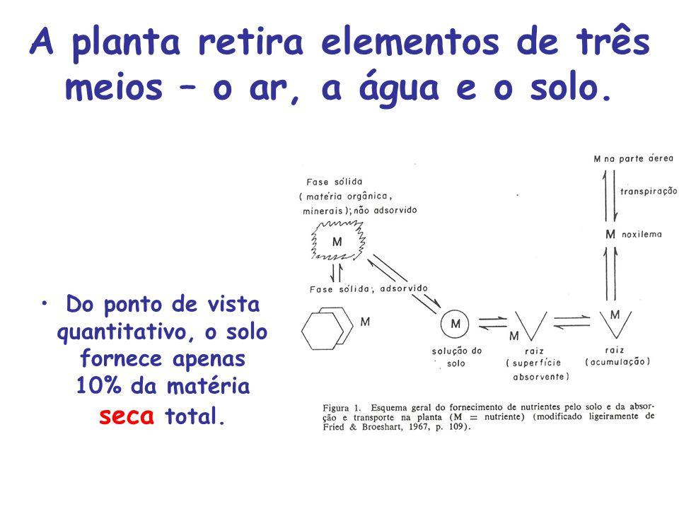 A planta retira elementos de três meios – o ar, a água e o solo.