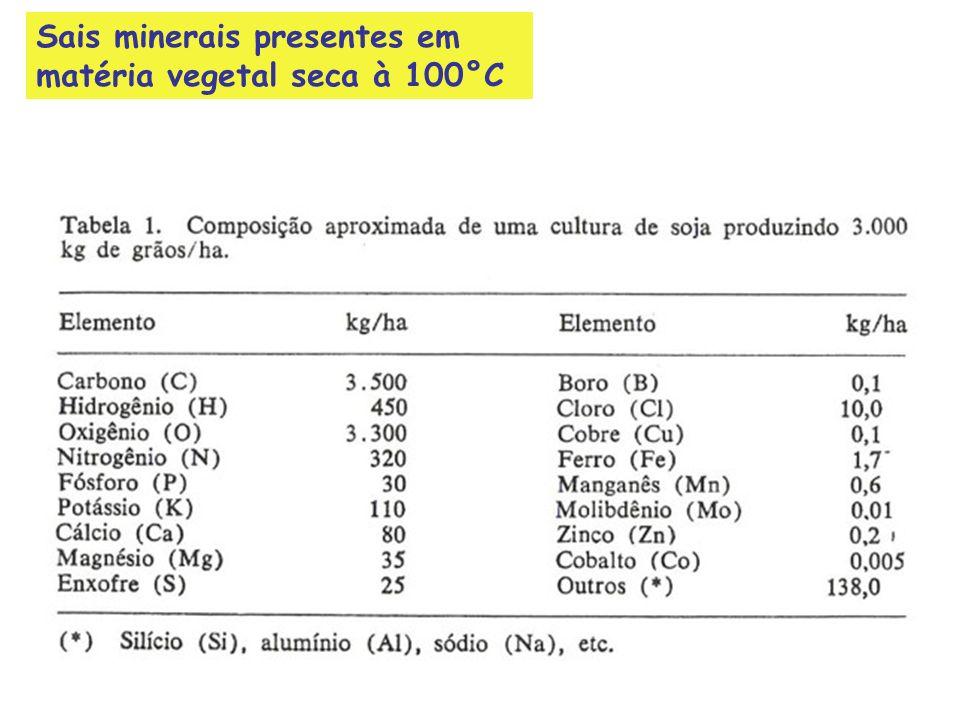 Sais minerais presentes em matéria vegetal seca à 100°C