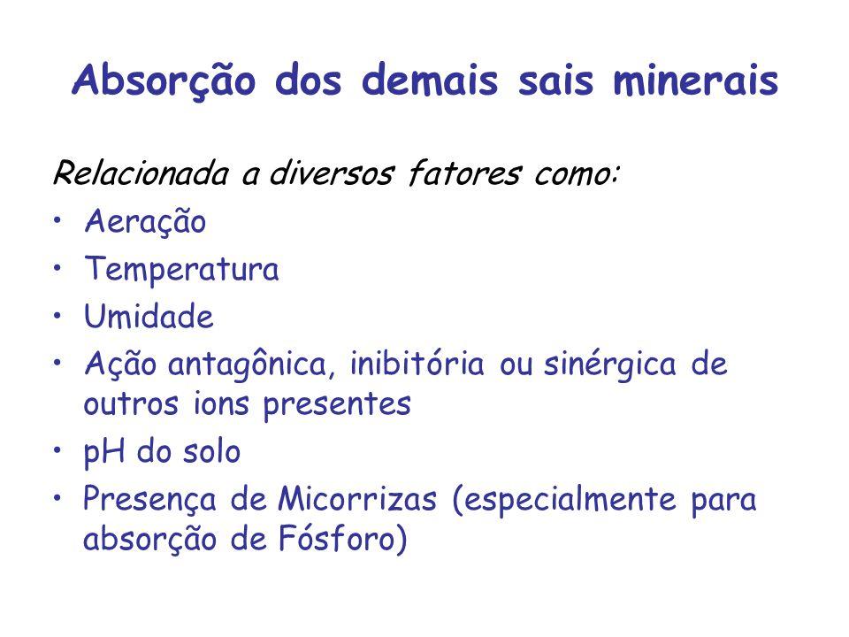 Absorção dos demais sais minerais
