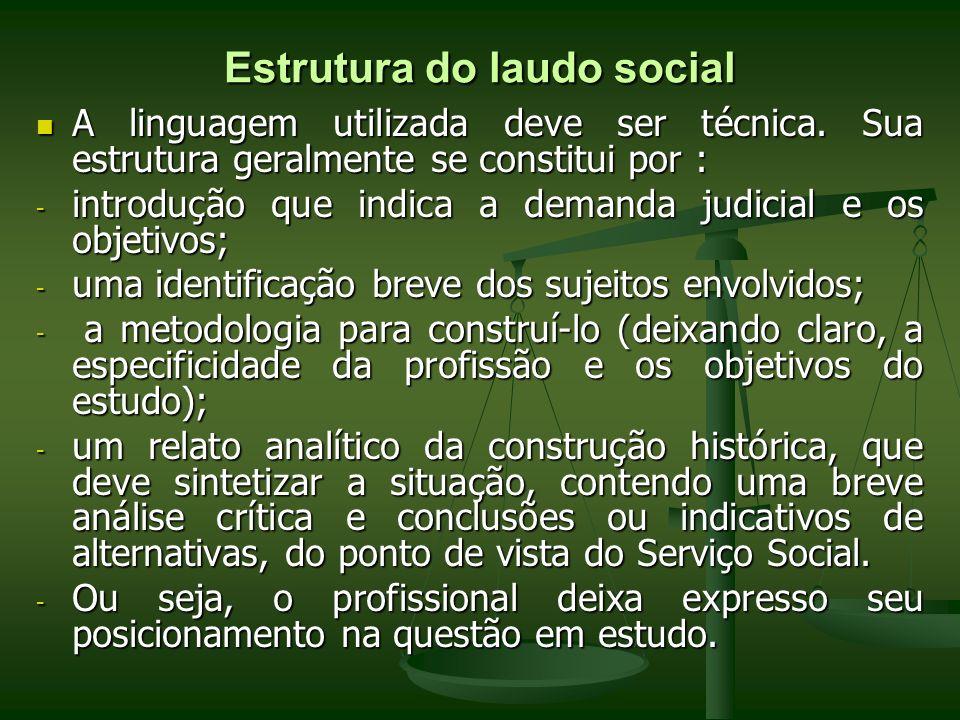 Estrutura do laudo social